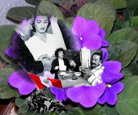 Rcbaez_violeta-siempre
